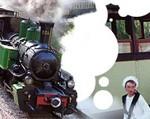 train_vivarais