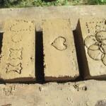pisé, viricelles, loire, rhône, brique, sentier, botanique, fabrication