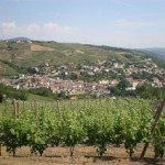 chavanay, camping, hotel, hebergement, location, pilat, rhône, vin, fête, vigneron, pomme, via rhona