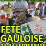 Fête Gauloise à Serpaize, char, combats, restauration, hébergement, location, camping, loire, isère, tente, caravane, rhône, activité, balade.