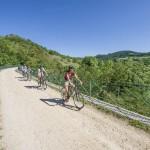 véloroute via fluvia V73, voie verte via fluvia, via fluvia, piste cyclable, chemin de randonnée, Rhône, Loire, hébergement, camping, location, gîte, chambre d'hôtes, découverte à vélo, balade à vélo, balade à pied,